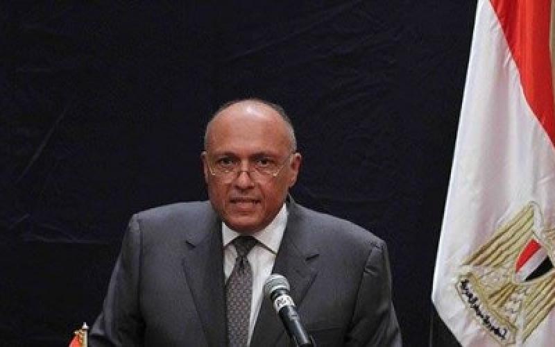 Глава МИДЕгипта призывает кобщей ответственности вборьбе стерроризмом