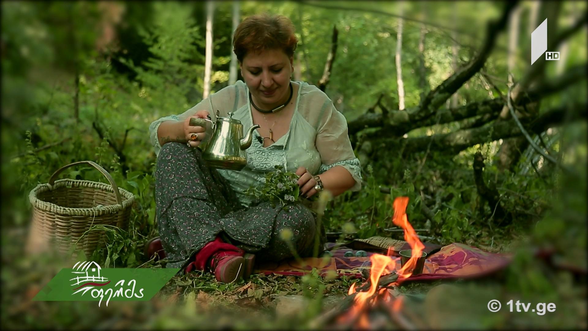 #არტიშოკი ველური მცენარეების საიდუმლო - როგორ მივიღოთ სარგებელი ბუნებისგან გარემოს დაზიანების გარეშე