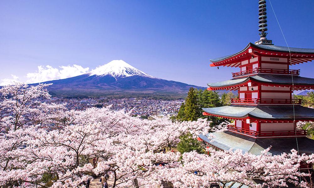 მოგზაურობა იაპონიაში