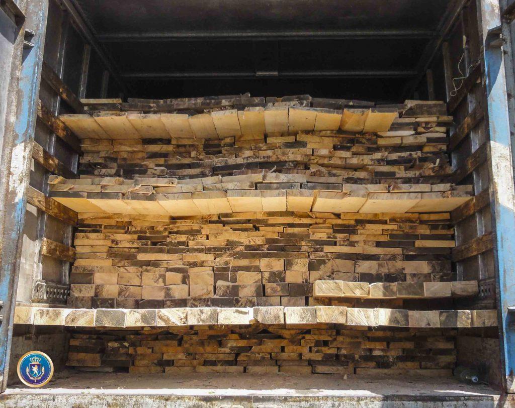 საგამოძიებო სამსახურმა ხის მასალის უკანონო გადაზიდვა-რეალიზაციის ფაქტზე პასუხისგებაში 12 პირი მისცა