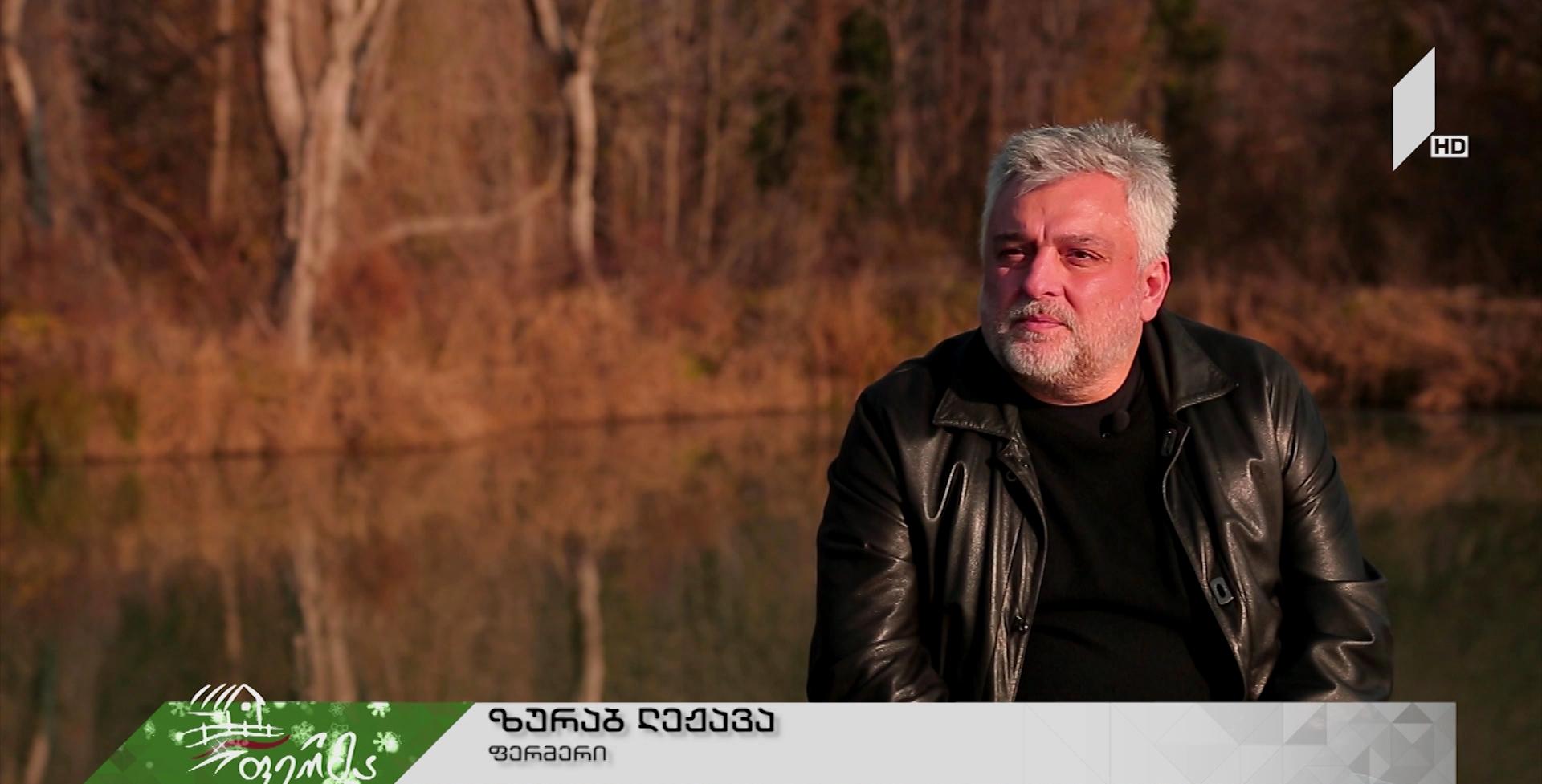 ბიზნესინტრიგა, რომელმაც გაამართლა - ყოფილი წყალბურთელის წვლილი ქართული აკვაკულტურის განვითარებაში