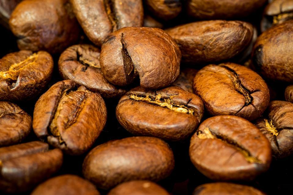 მსოფლიო ყავის გარეშე - სახიფათო დაავადება, რომელიც ყავას გადაშენებით ემუქრება