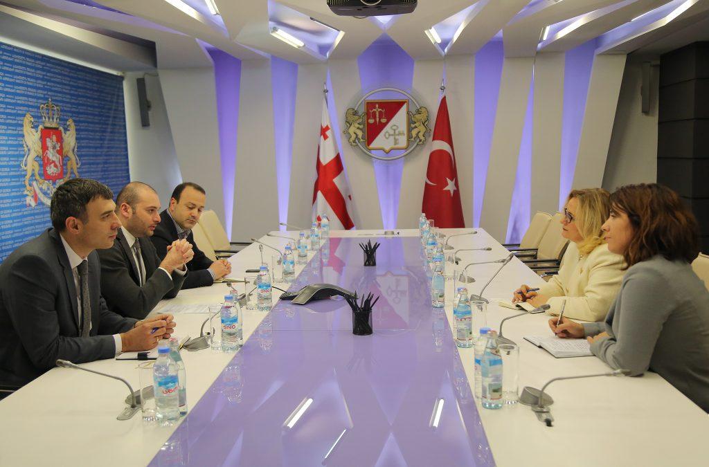 მამუკა ბახტაძემ თურქეთის ახალ ელჩთან გაცნობითი ხასიათის შეხვედრა გამართა