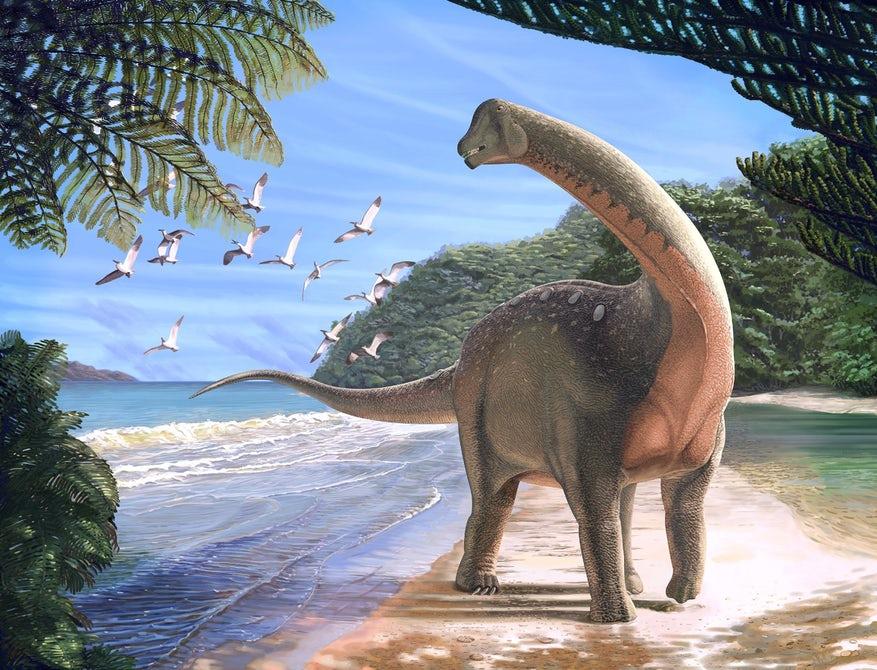 ეგვიპტეში აღმოჩენილი გიგანტური დინოზავრი ევროპისა და აფრიკის უძველეს კავშირზე მიუთითებს