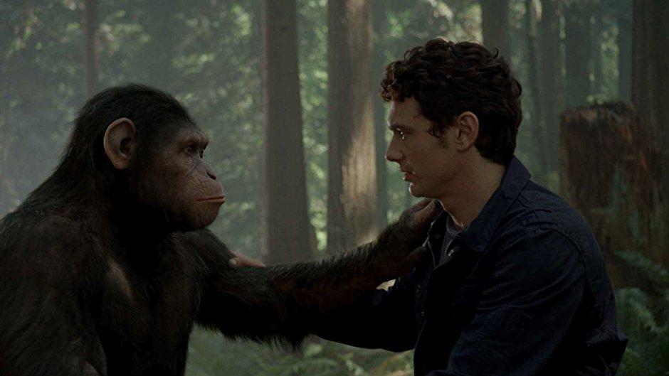 გადამწყვეტი ჰორმონი, რომელმაც შეიძლება, მაიმუნებისგან ადამიანების გამიჯვნა და ევოლუცია გამოიწვია