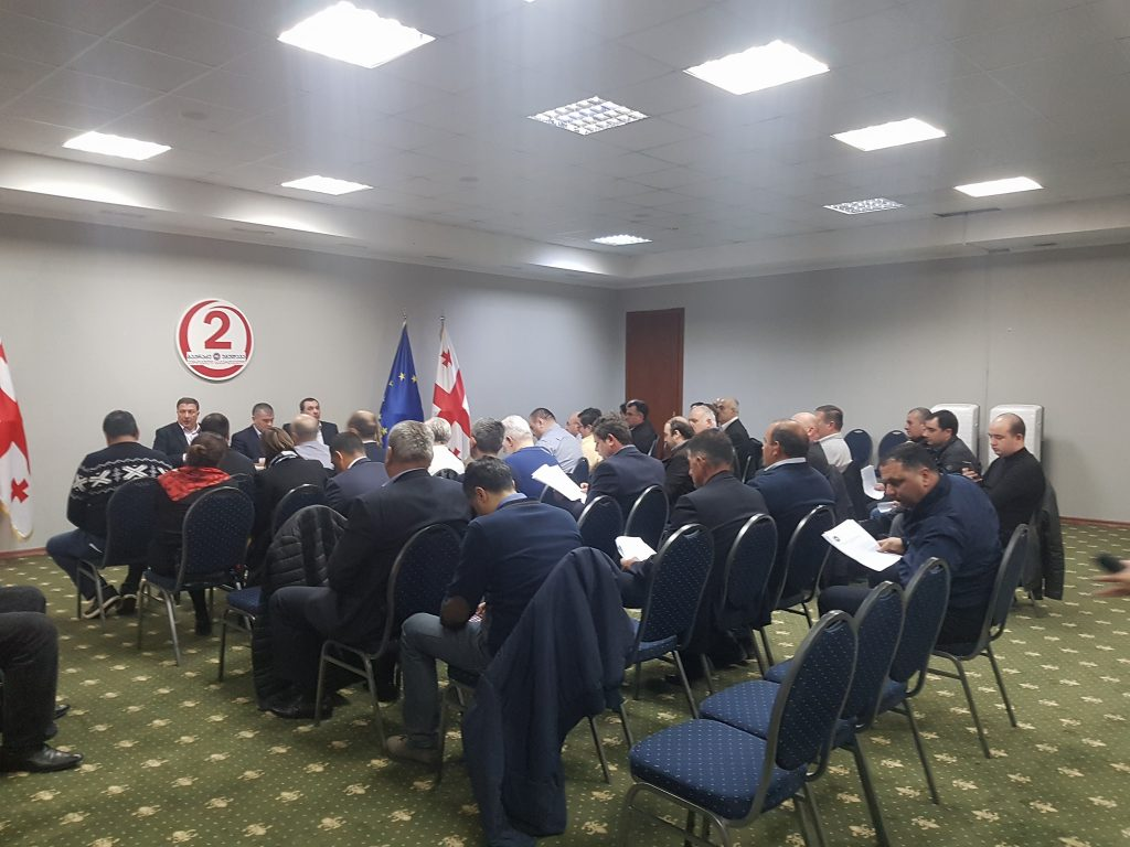 Future plans of European Georgia discussed during sitting of Party's Political Council