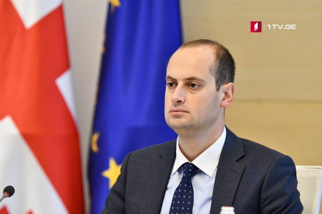 Georgian Foreign Minister says airstrikes in Syria is proper and needed response