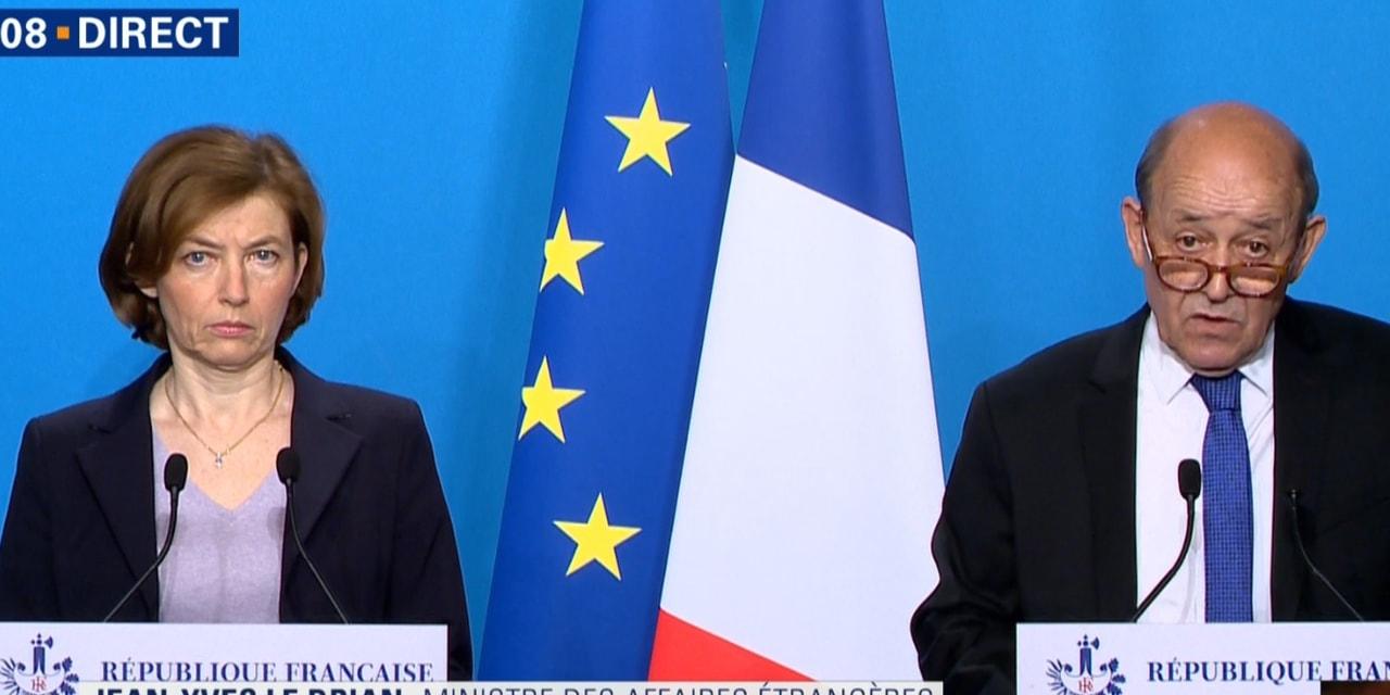 საფრანგეთის თავდაცვის მინისტრი - საფრანგეთმა რუსეთი სირიაზე დარტყმის შესახებ გააფრთხილა [ვიდეო]