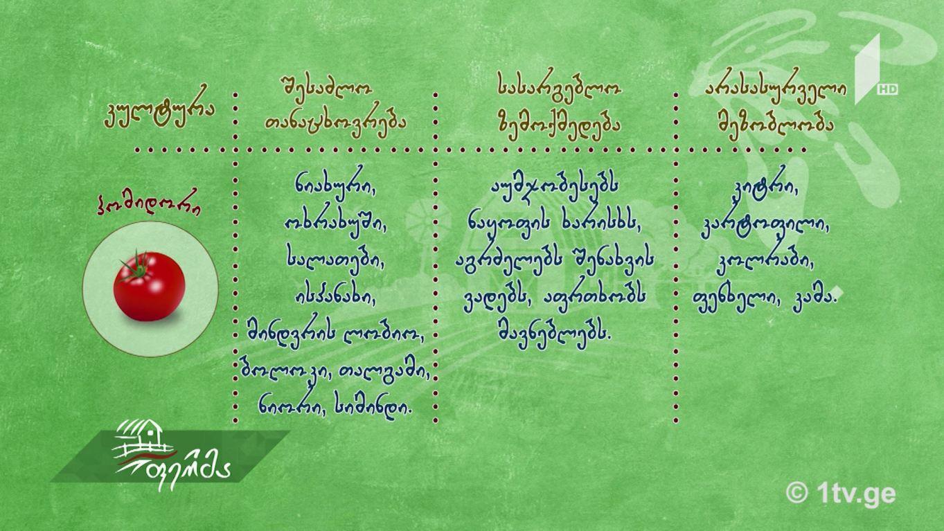#უკეთრომაკეთო  შერეული თესვა:  ბოსტნეული, მწვანილი - მეგობარი მცენარეები