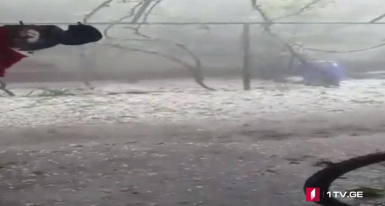 ასპინძაში სეტყვამ ხეხილის ნაკვეთები დააზიანა