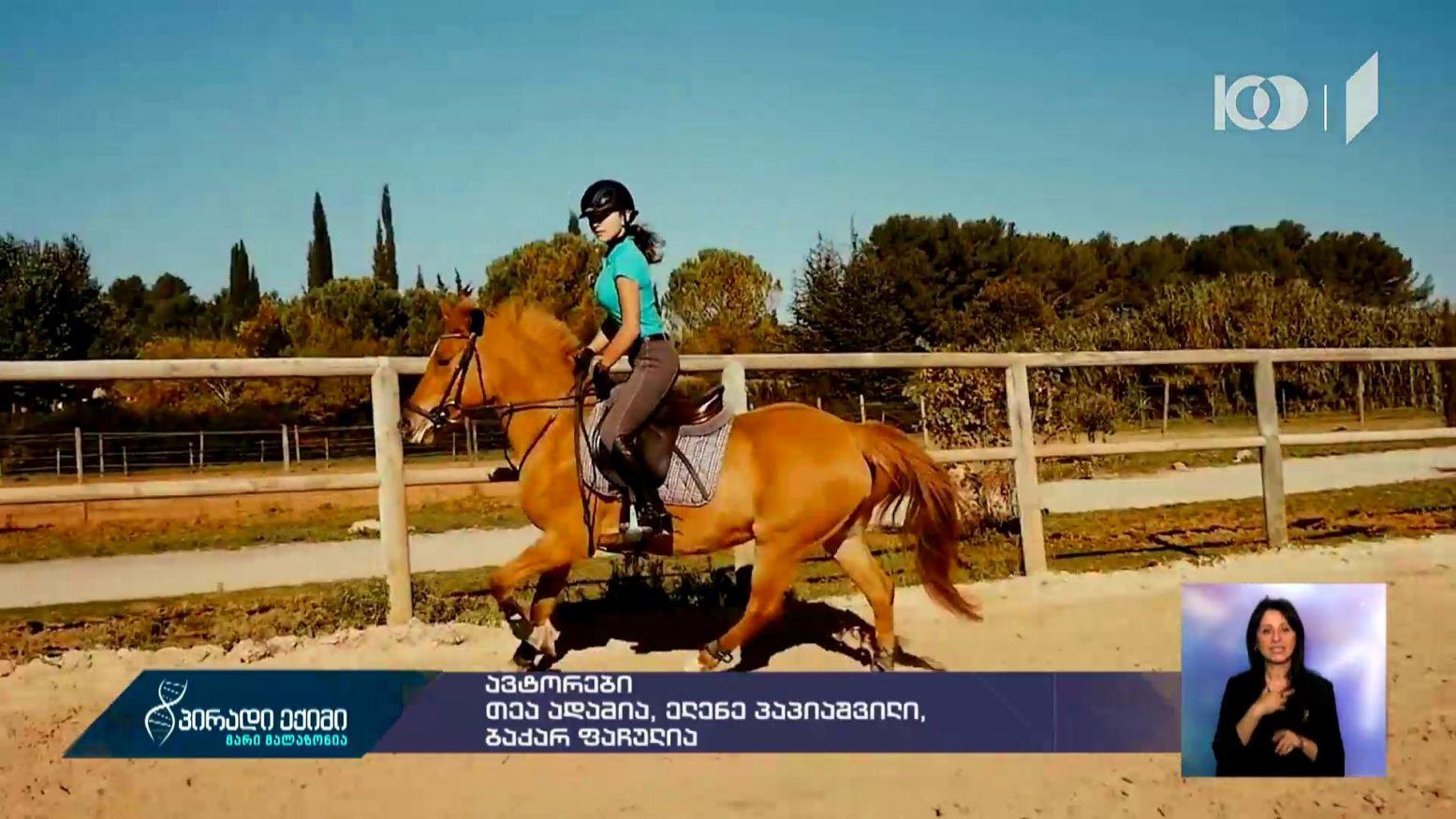 #პირადიექიმი ცხენით ჯირითი - რეკომენდაციები