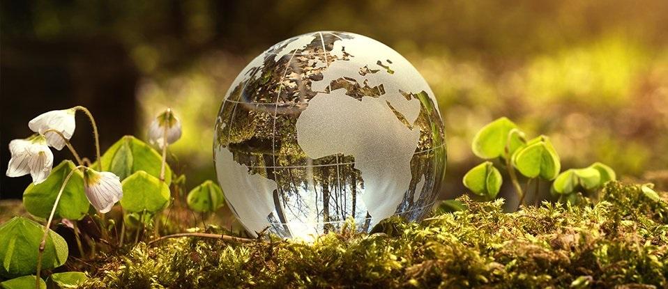 აფრიკის გაყოფა მხოლოდ დასაწყისია, დედამიწაზე უზარმაზარი ცვლილებები მიმდინარეობს