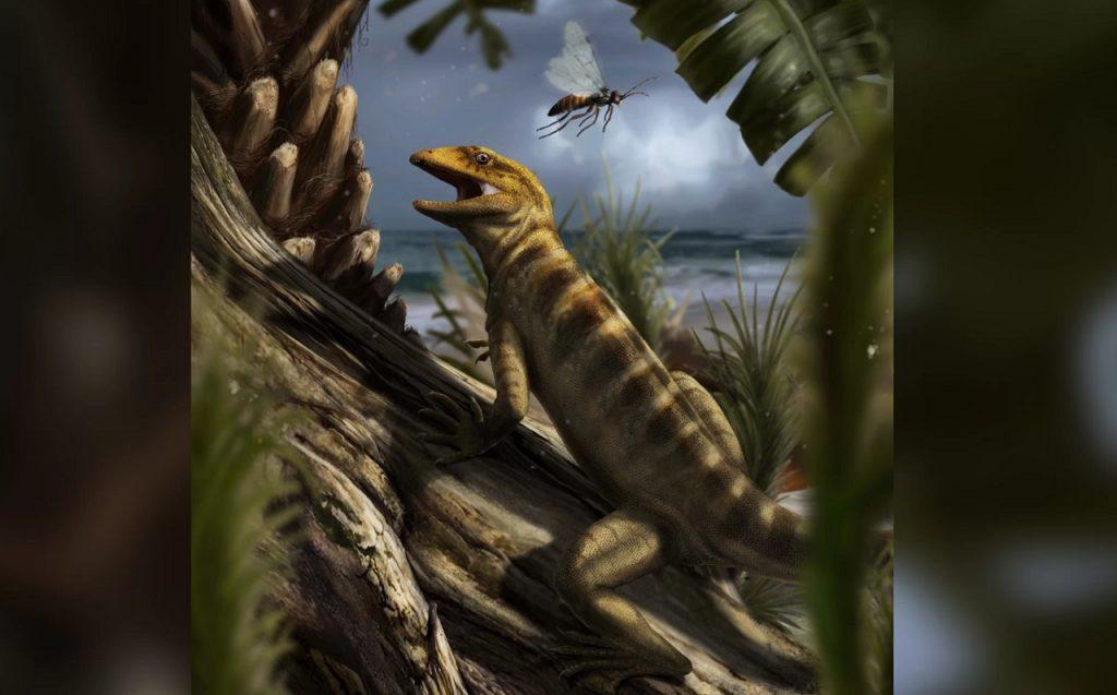 """აღმოჩენილია 240 მლნ წლის წინანდელი """"ყველა ხვლიკის დედის"""" ნამარხი"""