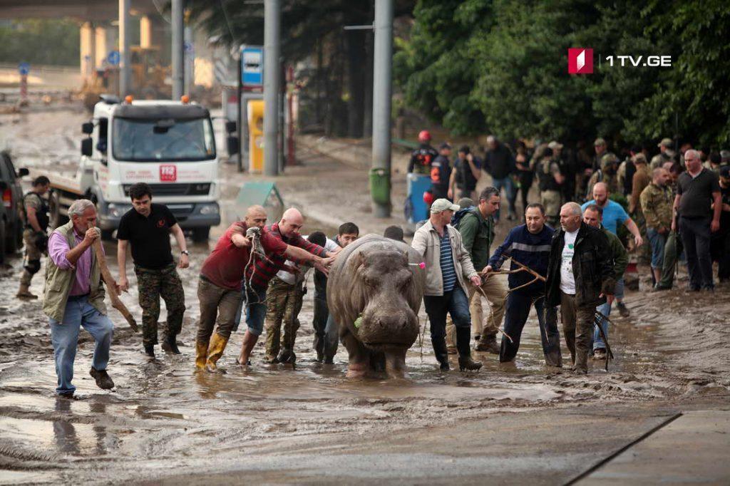 """თბილისში 13 ივნისის სიმბოლოდ ქცეული ბეჰემოტ""""ბეგის"""" ძეგლი დაიდგმება"""