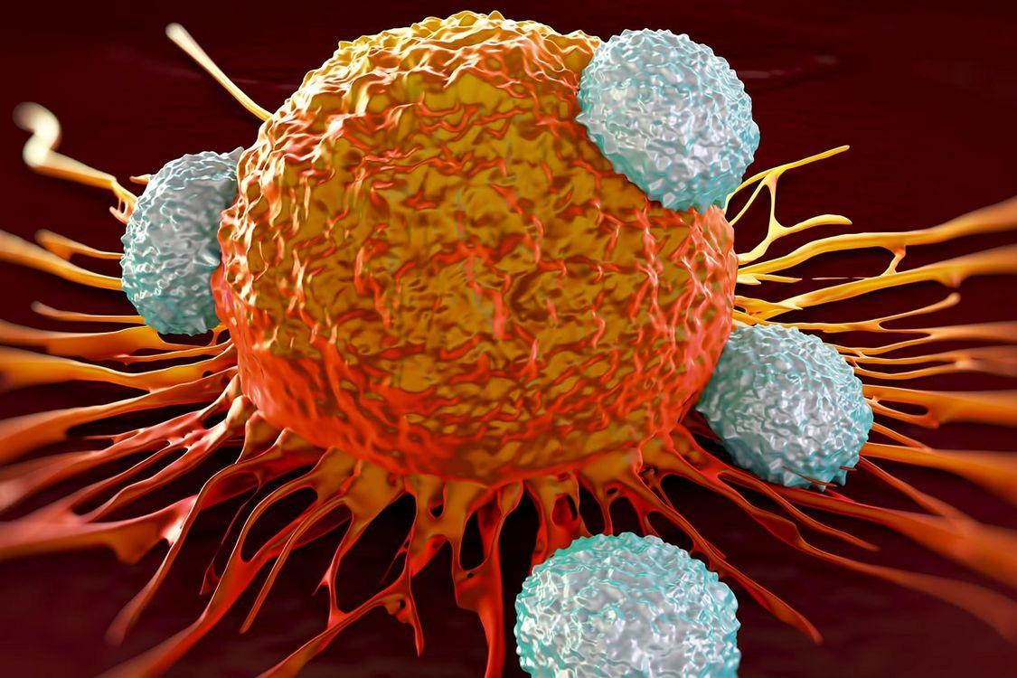 მეცნიერებმა აღმოაჩინეს ახალი მექანიზმი, რომელიც კიბოს უჯრედების გავრცელებას აჩერებს