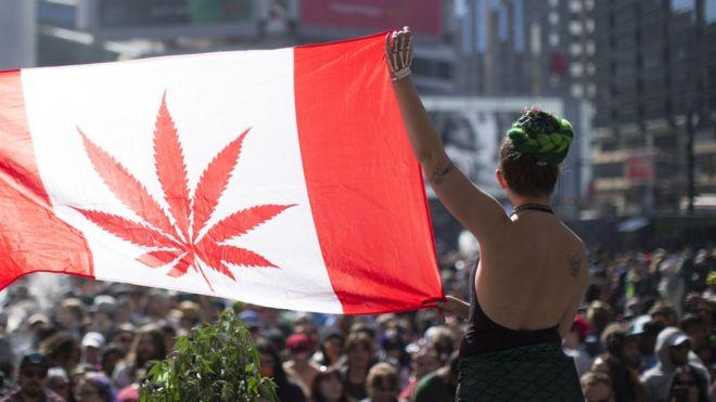 BBC - კანადამ მარიხუანის ლეგალიზებისკენ ნაბიჯი გადადგა