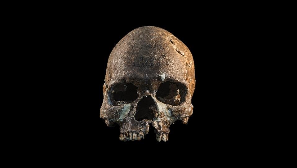 8000 წლის ნამარხებმა სამხრეთ-აღმოსავლეთ აზიის ხალხთა წარმოშობის დიდი ხნის საიდუმლო ამოხსნა