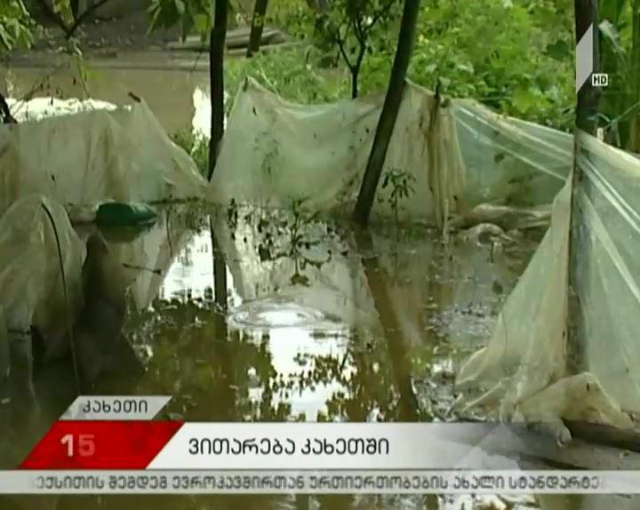 ძლიერმა წვიმამ ლაგოდეხისა და სიღნაღის სოფლები დააზარალა
