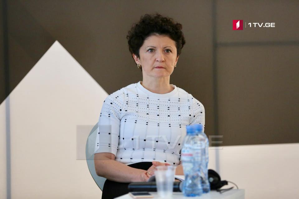 Тея Цулукиани встретилась с министром юстиции Армении