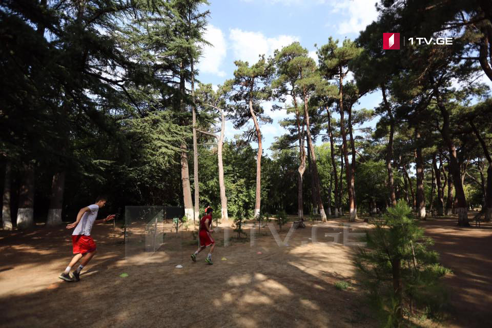 """მაია ბითაძე- დიღმის ტყე-პარკზე ორგანიზაცია """"უსაფრთხო სივრცის"""" სარჩელი ძალიან ბუნდოვანია"""