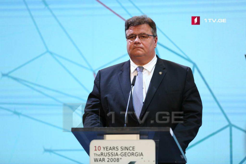 Линас Линкявичус – Солидарность необходима, чтобы напомнить международному содружеству, что Грузию не должны снимать с повестки дня