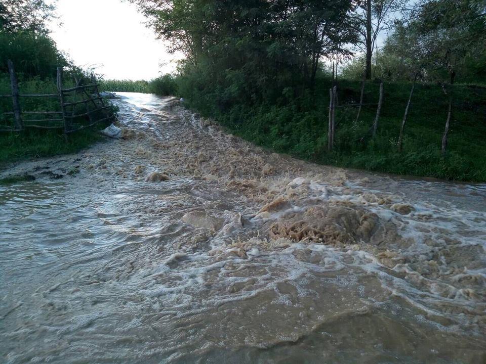 Служба по управлению чрезвычайными ситуациями – Уровень воды в двух селах Абаша снизился и гражданам не угрожает опасность