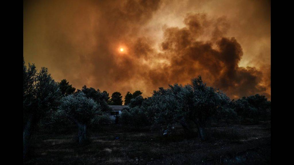 Из-за лесных пожаров в Греции на острове Эвия осуществлена эвакуация населения