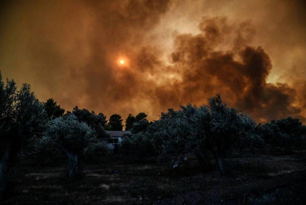 საბერძნეთში, კუნძულ ევიაზე ტყის ხანძრის გამო, ადგილობრივი მოსახლეობის ევაკუაცია განხორციელდა