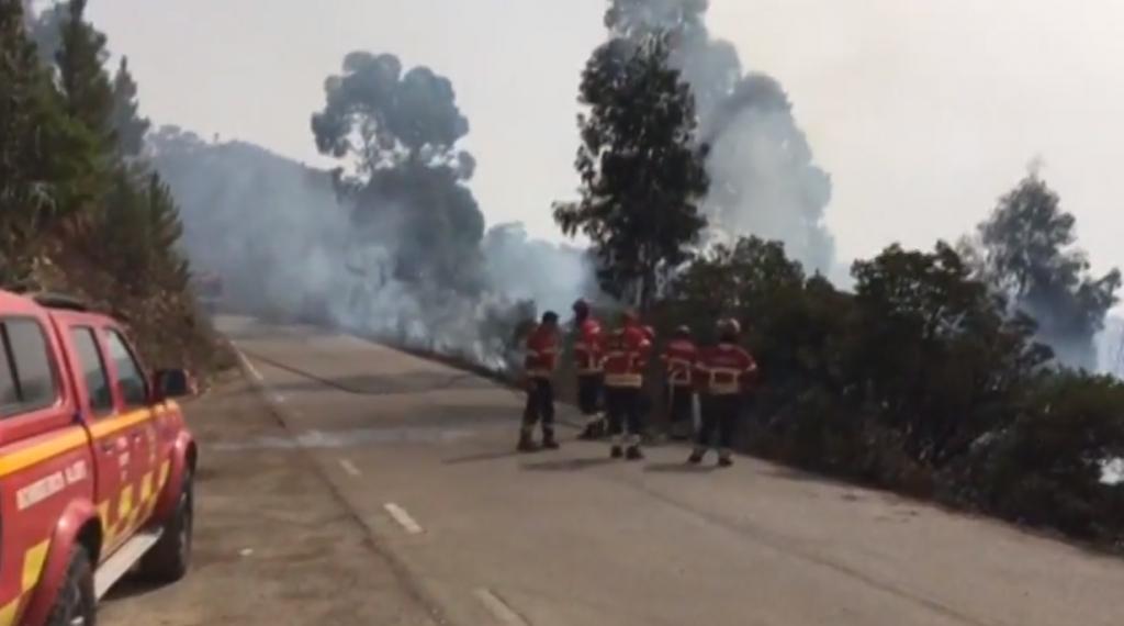 Уже четвертый день в Португалии не могут потушить лесные пожары