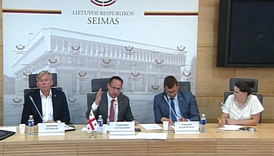Группа литовских парламентариев требует, чтобы МИД Франции и институты ЕС оценили выполнения соглашения о прекращении огня от 2008 года