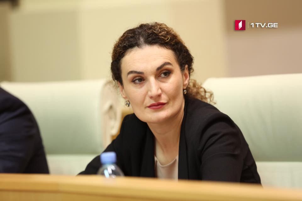 Кетеван Цихелашвили – Российская пропаганда является мощно финансируемой машиной, которая проникла по все демократические государства