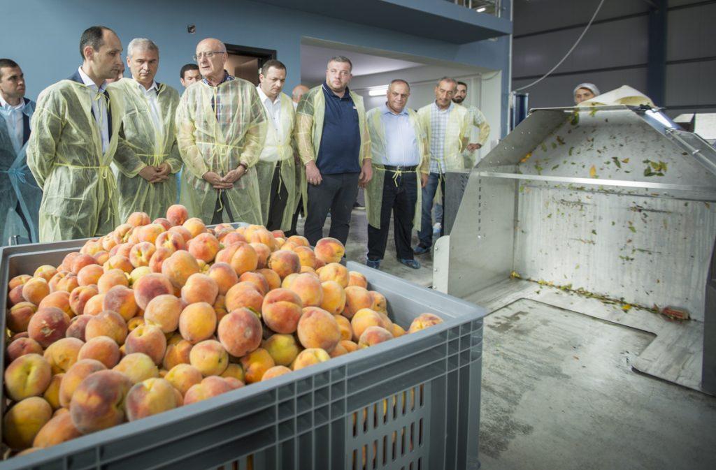 თელავის მუნიციპალიტეტში ხილის გადამამუშავებელი ახალი საწარმო ამოქმედდა