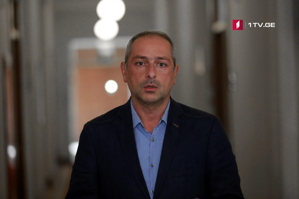 Ираклий Сесиашвили - Максимально используем все имеющиеся у нас ресурсы, чтобы Саломе Зурабишвили победила на выборах