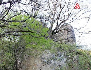 ახმეტის მუნიციპალიტეტში მდებარე არგოხის კოშკს კულტურული მემკვიდრეობის უძრავი ძეგლის სტატუსი მიენიჭა