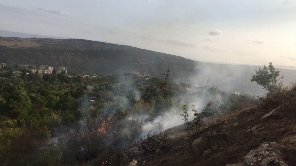 თბილისში, დაბა ზაჰესში ნაძვნარი დაიწვა [ფოტო]