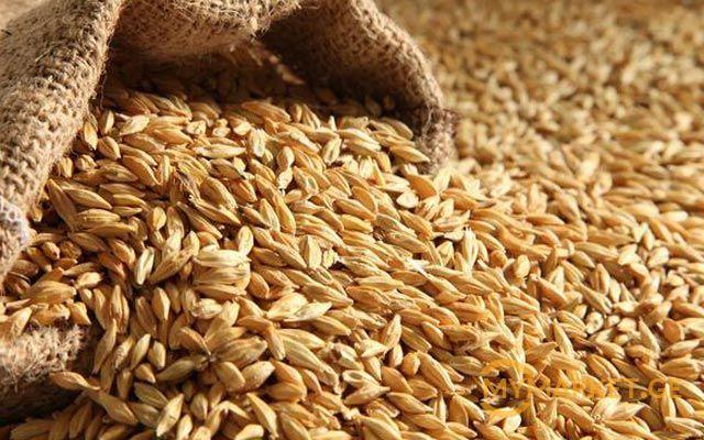 Tariff for wheat rail transportation from Georgia to Armenia halved