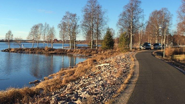 Շվեդիայում Վրաստանի քաղաքացու սպանության գործով ձերբակալվել է մեկ անձ