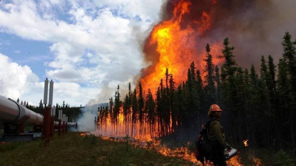 აშშ-ის მთავრობის ანგარიშის მიხედვით, კლიმატის ცვლილება ქვეყანას ასობით მილიარდი დოლარის ოდენობის ეკონომიკურ ზარალს მოუტანს