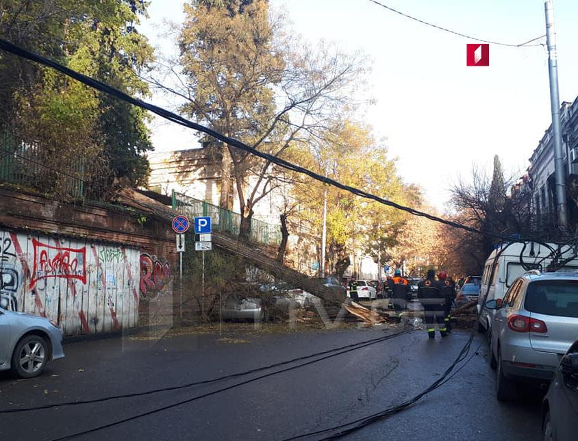Թբիլիսիում, Շալվա Դադիանիի փողոցում ծառն ընկել է ավտոմեքենաների վրա