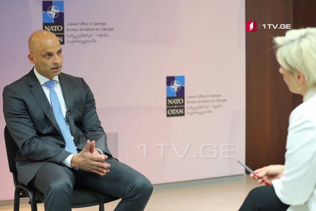 Джеймс Аппатурай – У Саломе Зурабишвили есть твердые позиции в связи с Россией, неопределенностей не существует, я рад, что еду в Брюссель с таким посланием