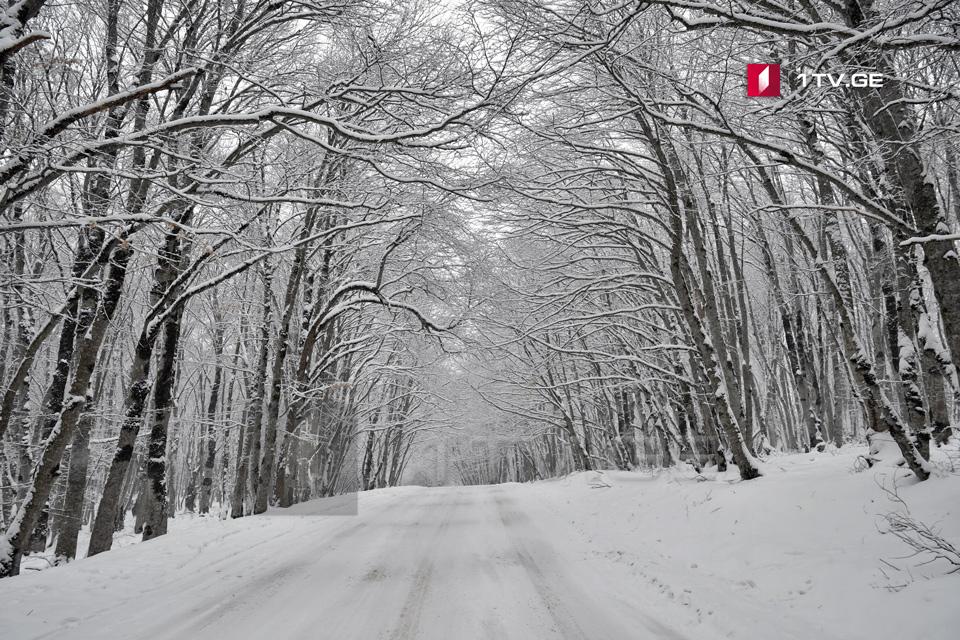 საქართველოში ზამთარში საშუალო მრავალწლიურ ტემპერატურაზე ერთი გრადუსით მაღალი ტემპერატურაა მოსალოდნელი