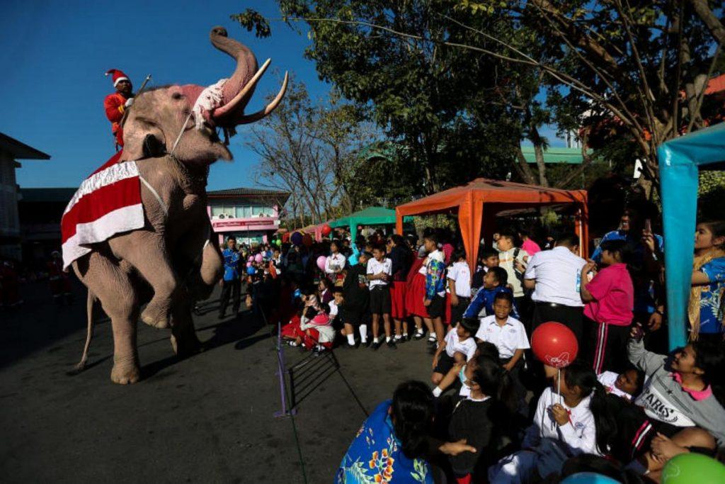 ტაილანდში სანტა კლაუსის ფორმებში გამოწყობილმა სპილოებმა ბავშვებს საჩუქრები დაურიგეს