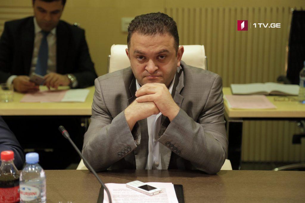 Гедеван Попхадзе покидает должность первого заместителя председателя парламентского комитета по защите прав человека