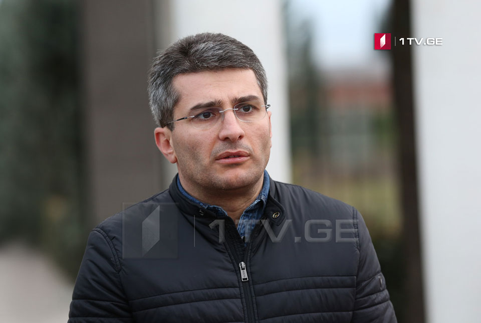 Mamuka Mdinaradze: We have not talked about expulsion of anybody or any sanctions