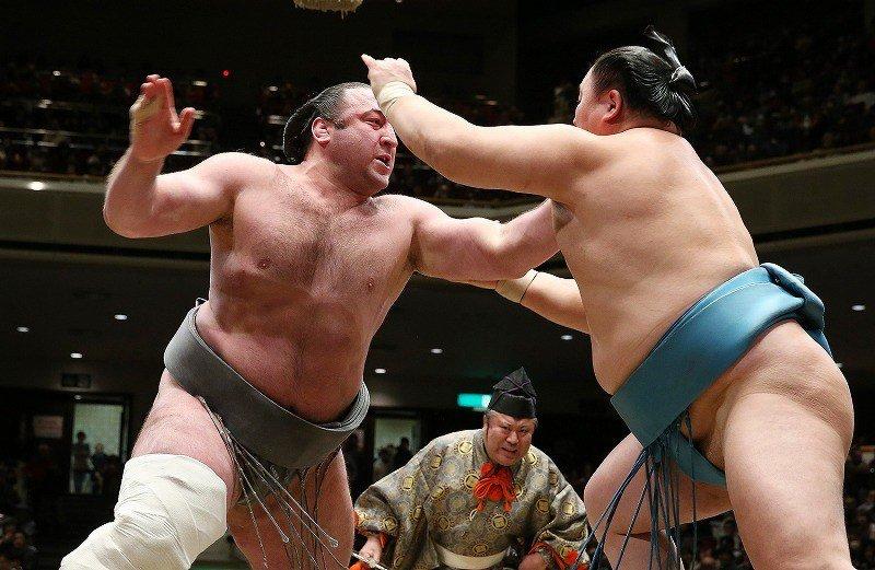 Тотиносин будет участвовать на Хацу басё