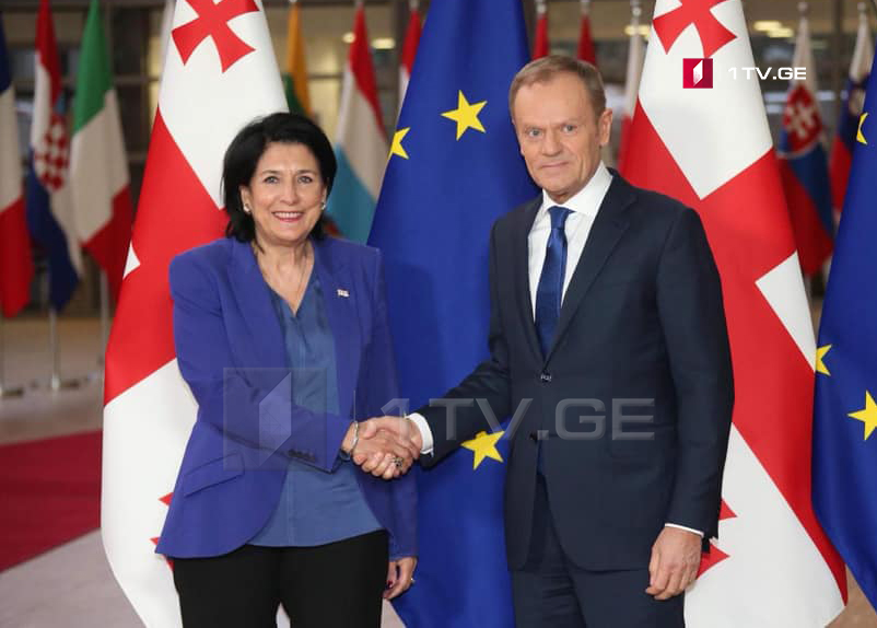 Georgian President meets with President of European Council in Brussels