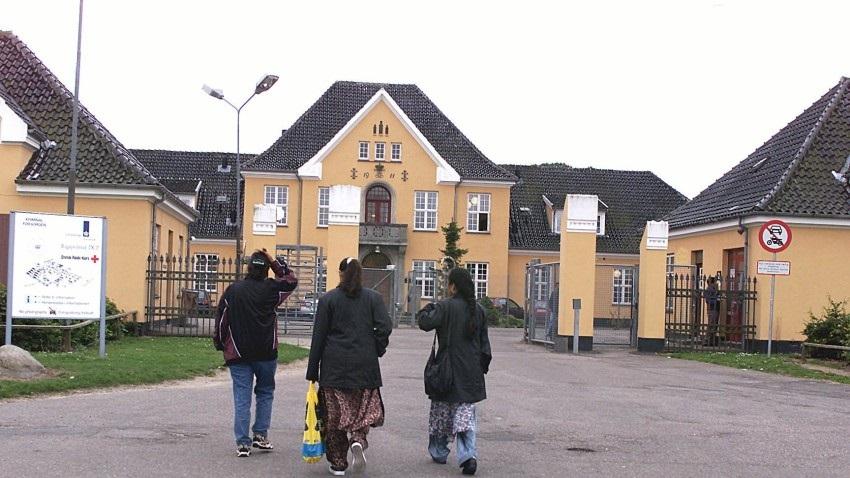 დანიაში თავშესაფრის მაძიებელთა რაოდენობით საქართველოს მოქალაქეები მესამე ადგილზე არიან