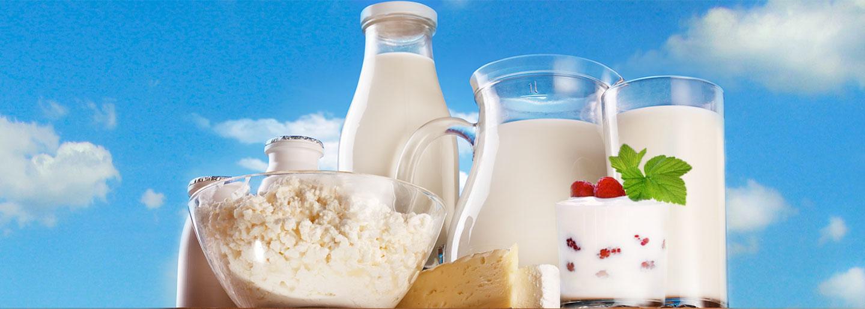 """ჩვენი ფერმა - ყველაფერი """"ქართული რძის"""" ნიშნის შესახებ"""