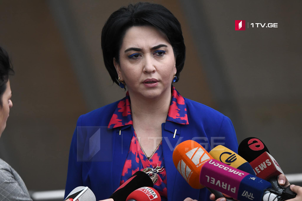 MP Eka Beselia plans to raise 4 issues at today's meeting of parliamentary majority