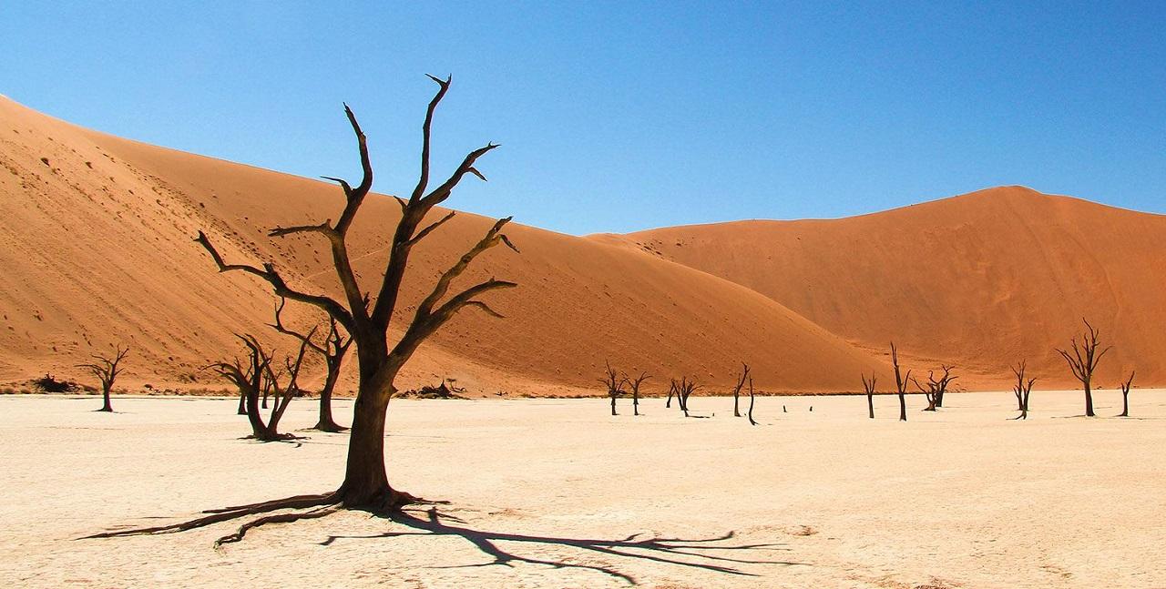 აფრიკაში, ნამიბის უდაბნოში უძველეს მყინვართა კვალი იპოვეს